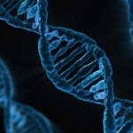 """""""Silent"""" Mutation Linked to Worse Kidney Cancer Outcome"""